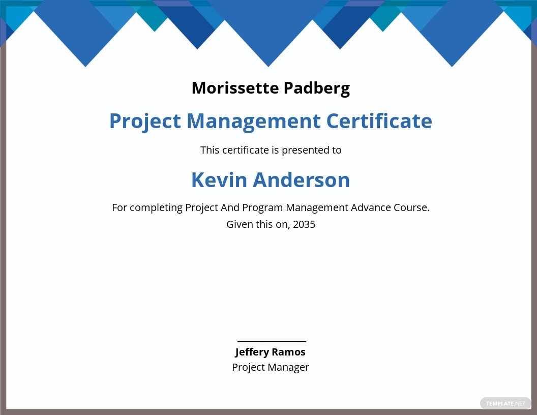 Project And Program Management Certificate Template