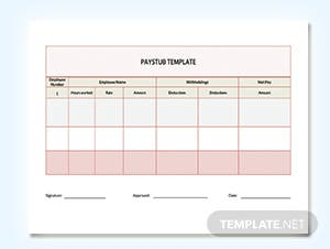 Pay Check Pay Stub Template