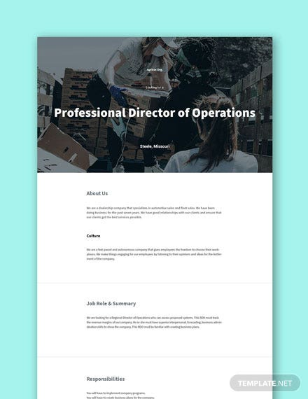 Professional Director of Operations Job Description Template