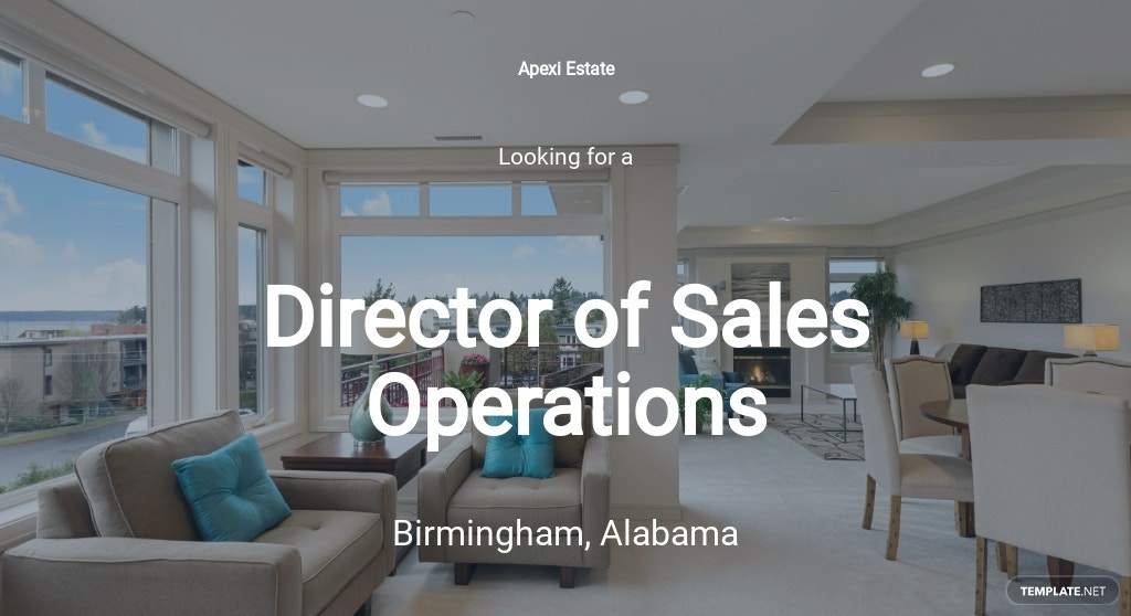 Director of Sales Operations Job Description Template