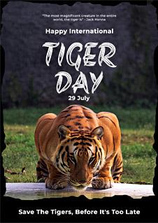 International Tiger Day Greeting Card
