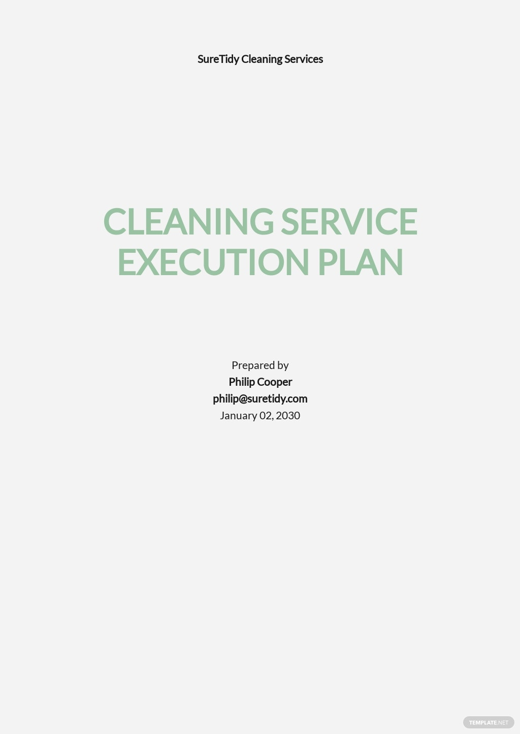 Execution Plan Template for Cleaning Services.jpe