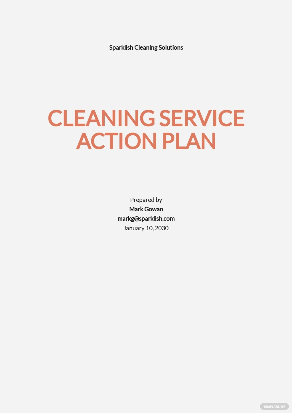 Action Plan Template For Cleaning Services.jpe