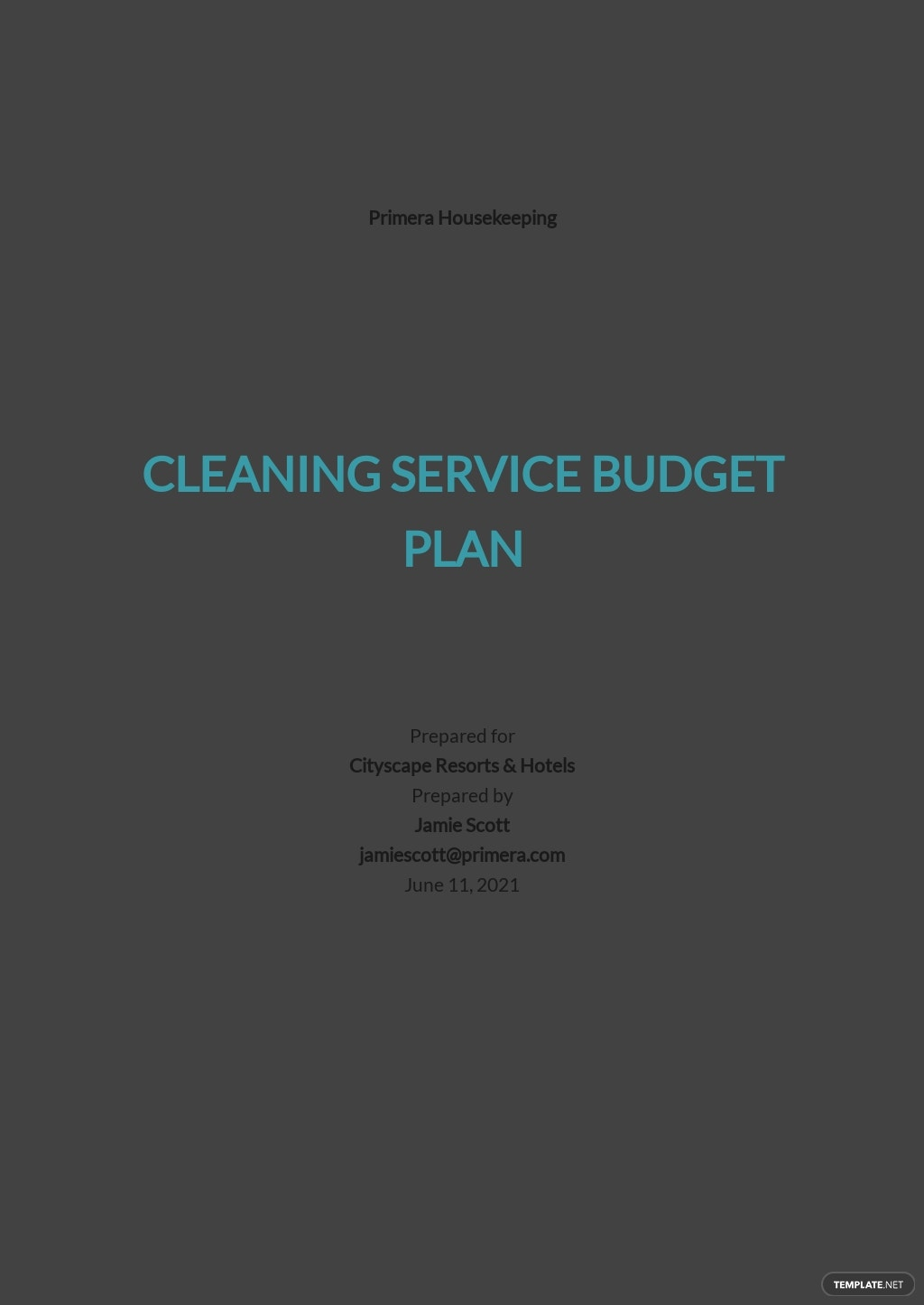 Cleaning Service Budget Plan Template