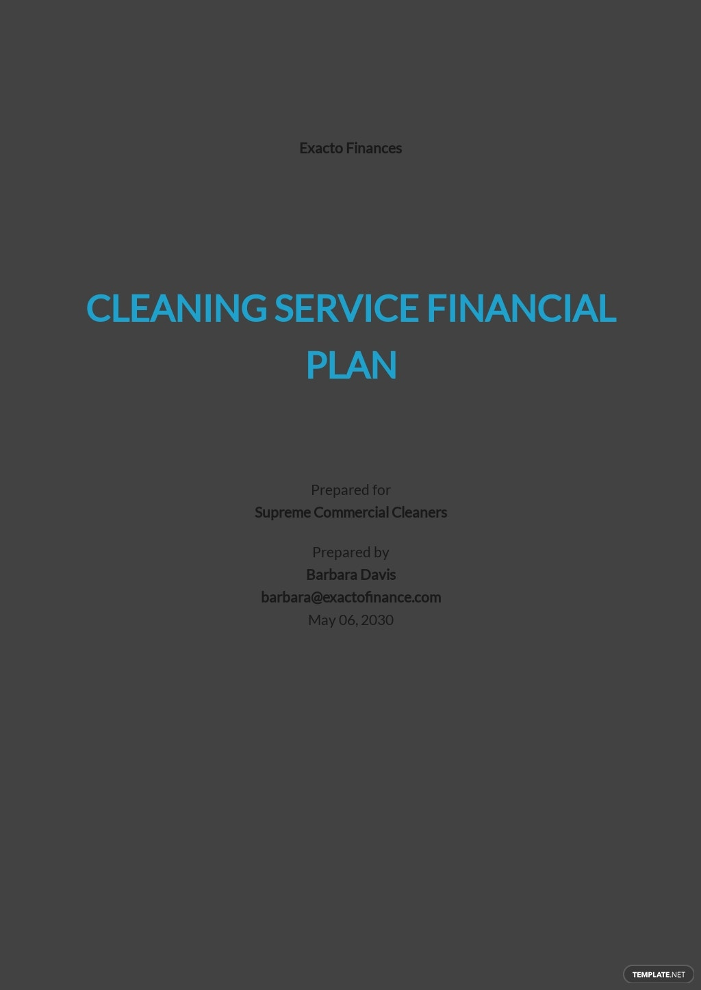 Cleaning Service Financial Plan Template