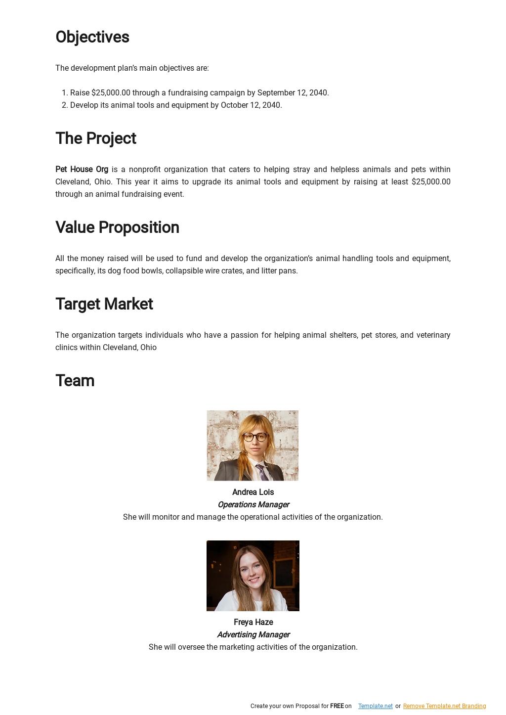 Nonprofit Development Plan Template 1.jpe