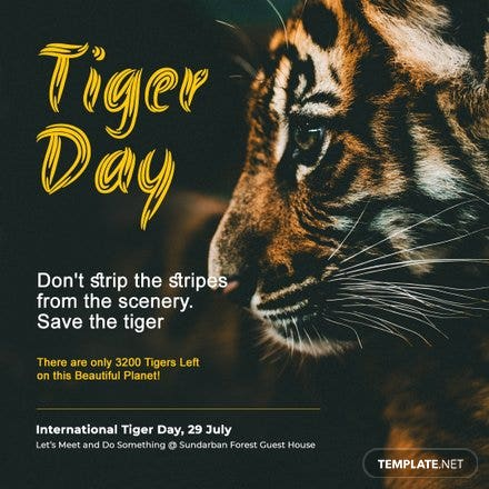 International Tiger Day Instagram Post