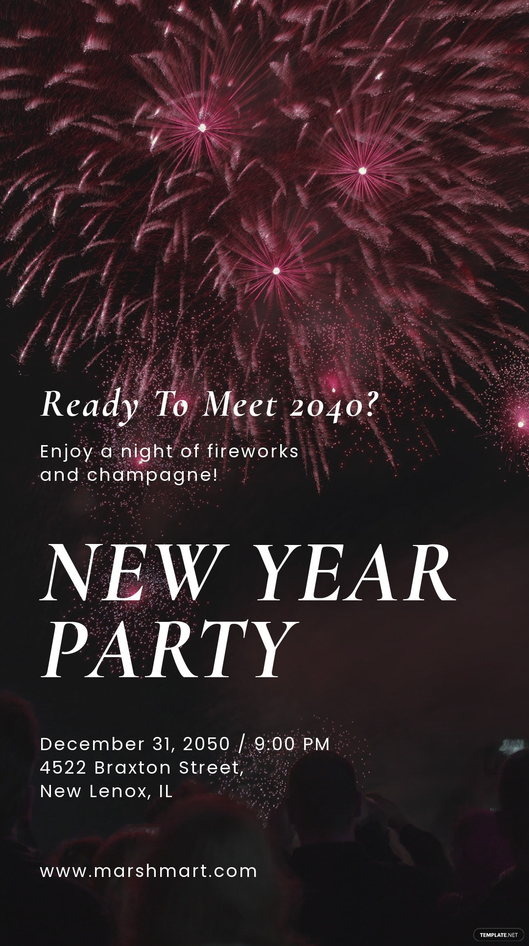New Year Party Instagram Story