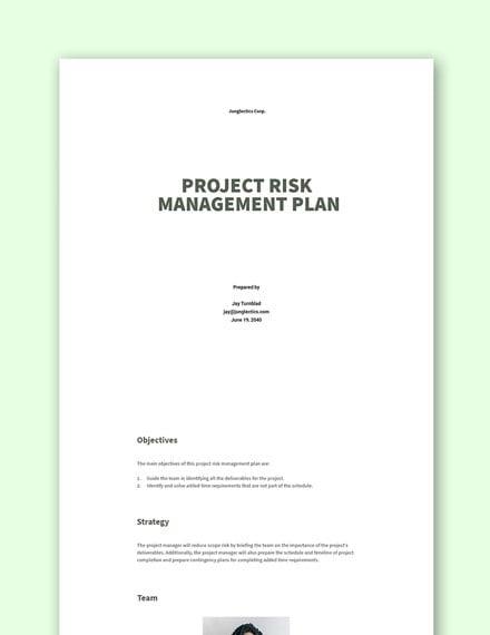 Project Risk Management Plan Template