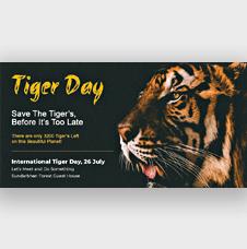 International Tiger Day Twitter Post