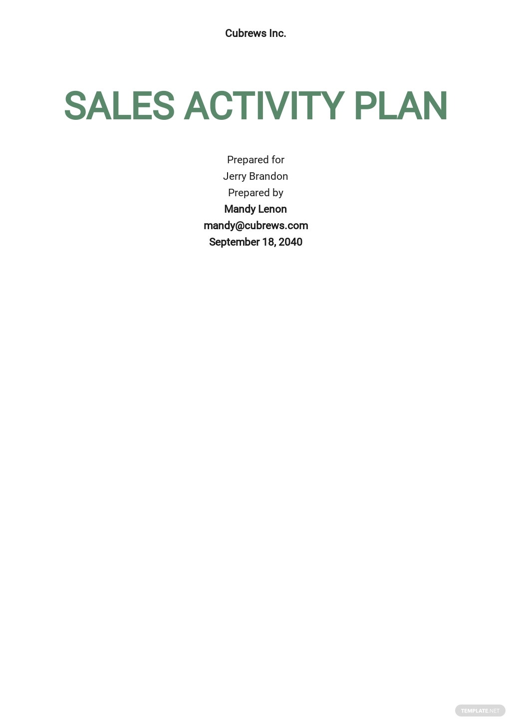 Sales Activity Plan Template