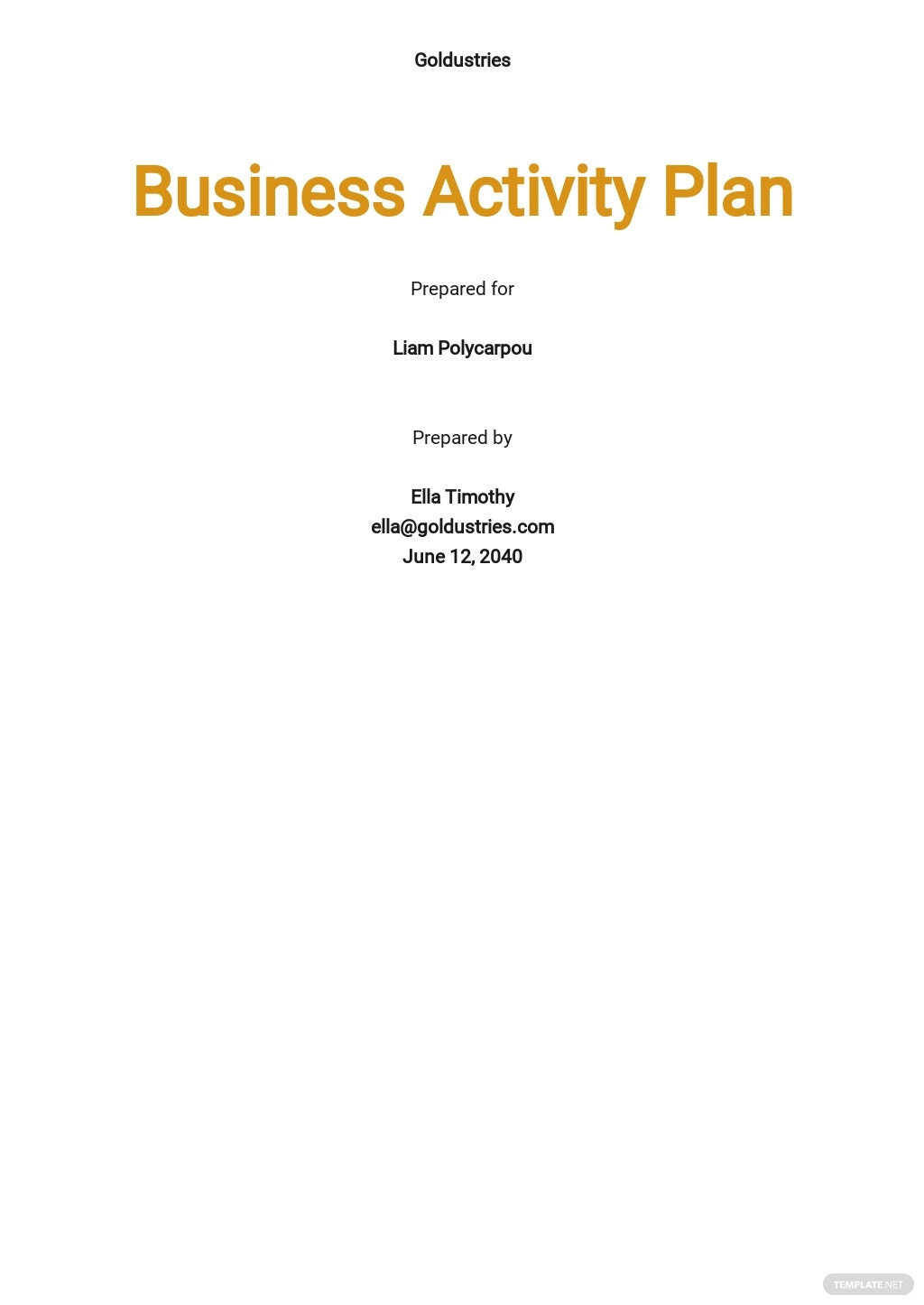 Business Activity Plan Template