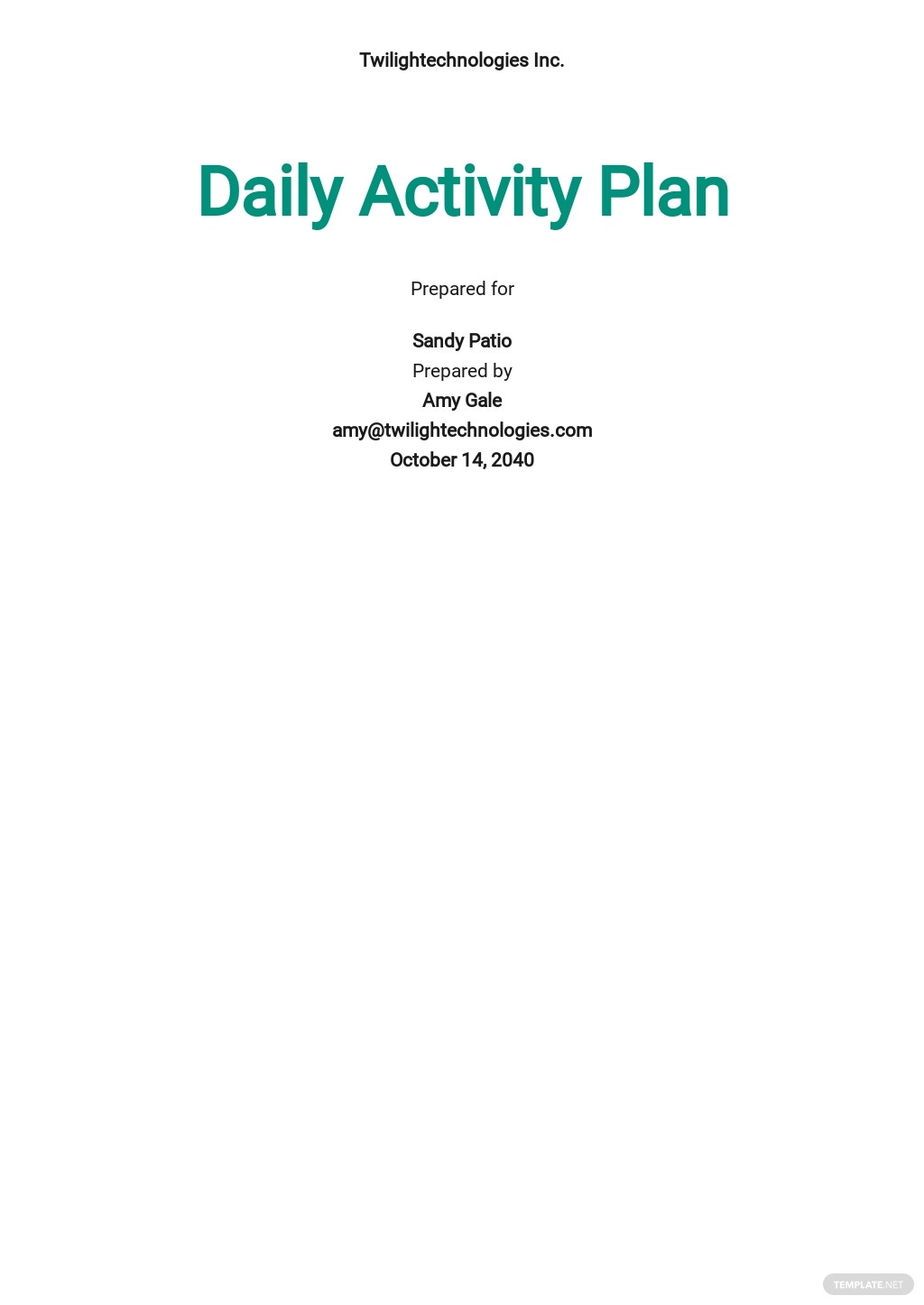 Daily Activity Plan Template