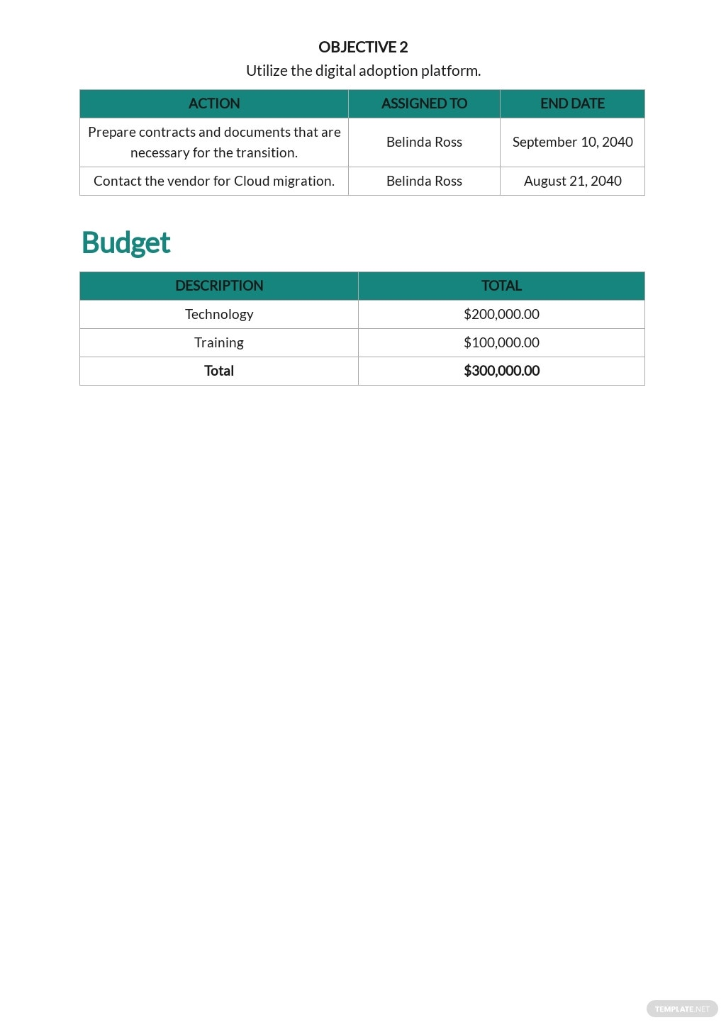 Free Project Transition Plan Template 3.jpe