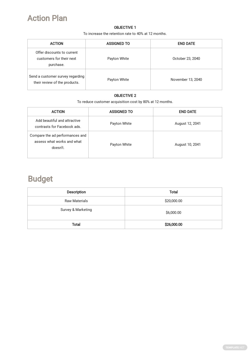 Free Business Growth Plan Template 3.jpe