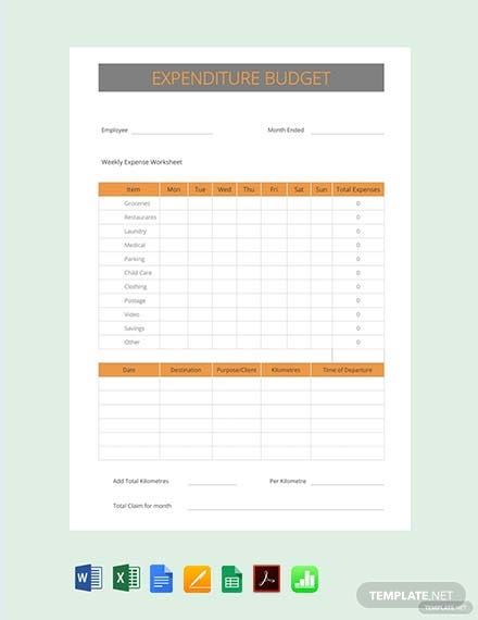 Free Expenditure Budget Template