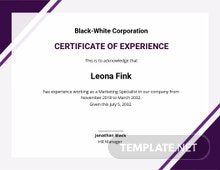 Free Certificate of Job Experience Template