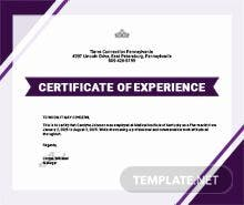 Free company experience certificate template in psd ms word free certificate of job experience template yelopaper Image collections