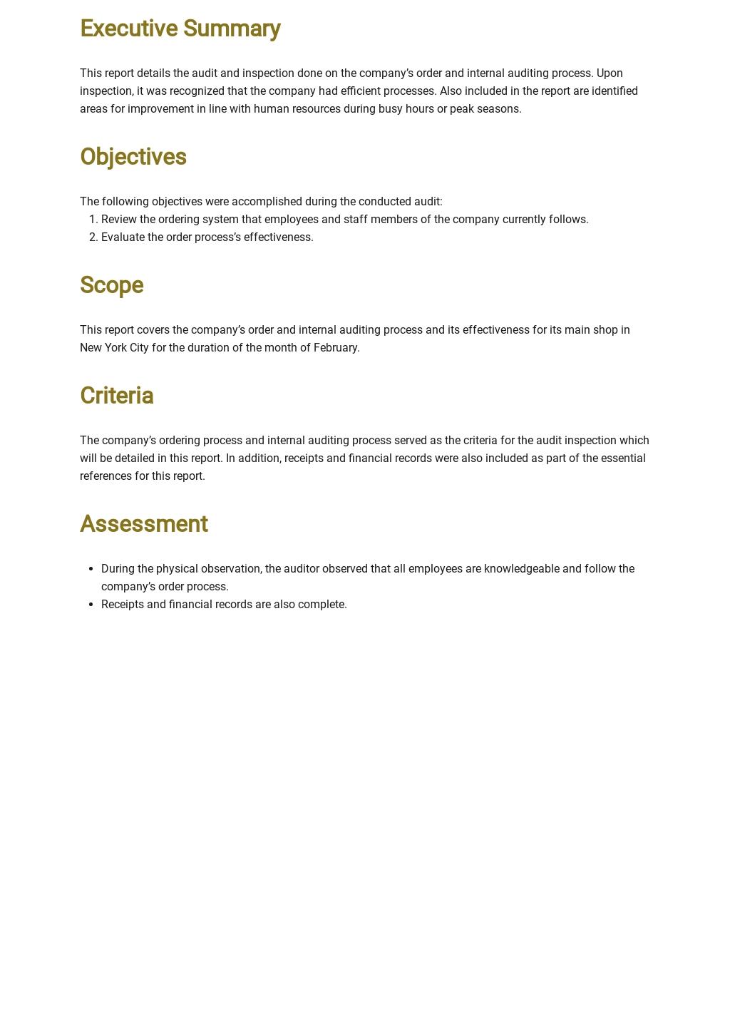 Free Finance Internal Audit Report Template 1.jpe