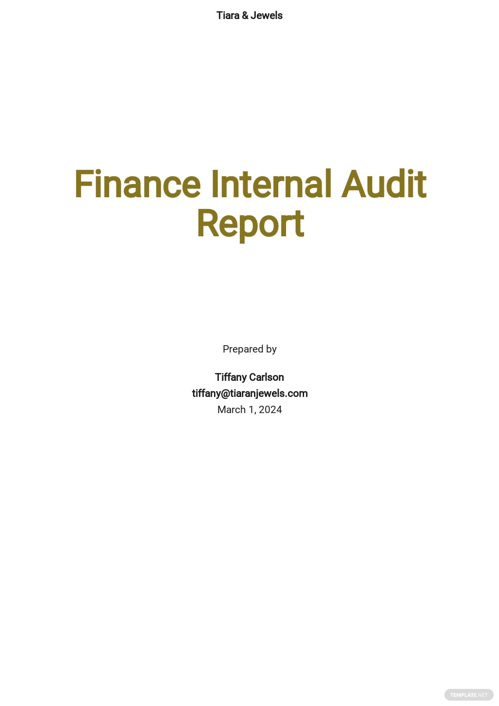 Finance Internal Audit Report Template