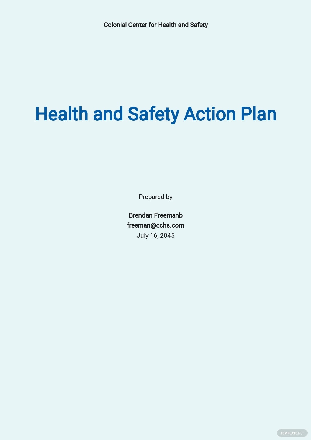 Health and Safety Action Plan Template