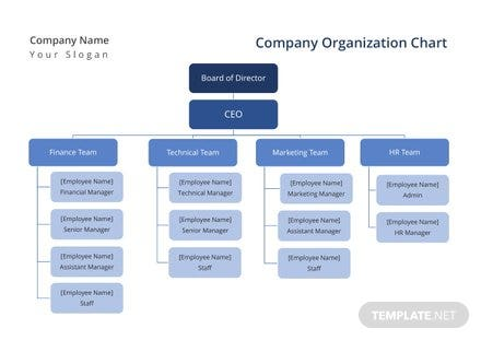 Company Organization Chart Template In Microsoft Word Templatenet - Employee organizational chart template