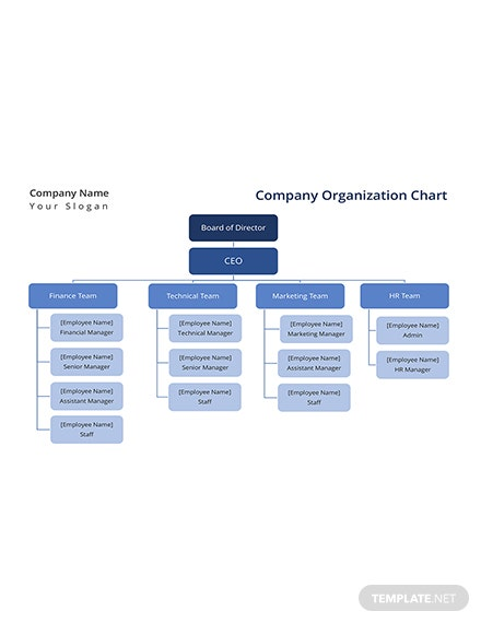 Company Organization Chart Template: Download 113+ Charts in Word ...