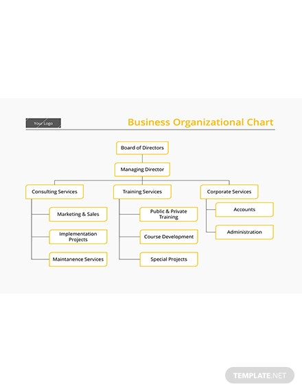 Business Organizational Chart Template: Download 113+ Charts in Word ...