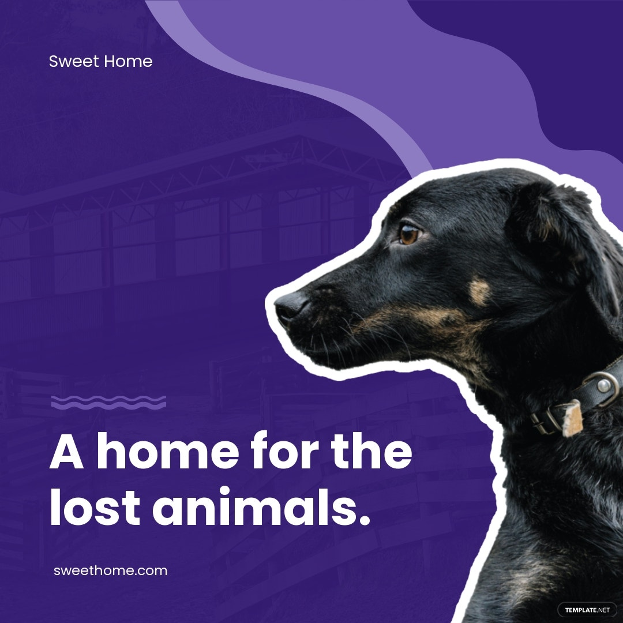 Animal Shelter Instagram Ad Template.jpe