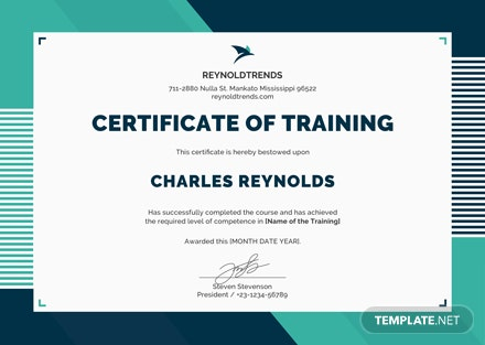 Free Company Training Certificate Template Download 200