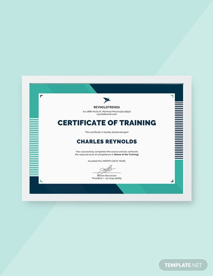 13 free training certificate templates download ready made