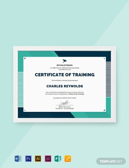 Free Company Training Certificate Template Download 537