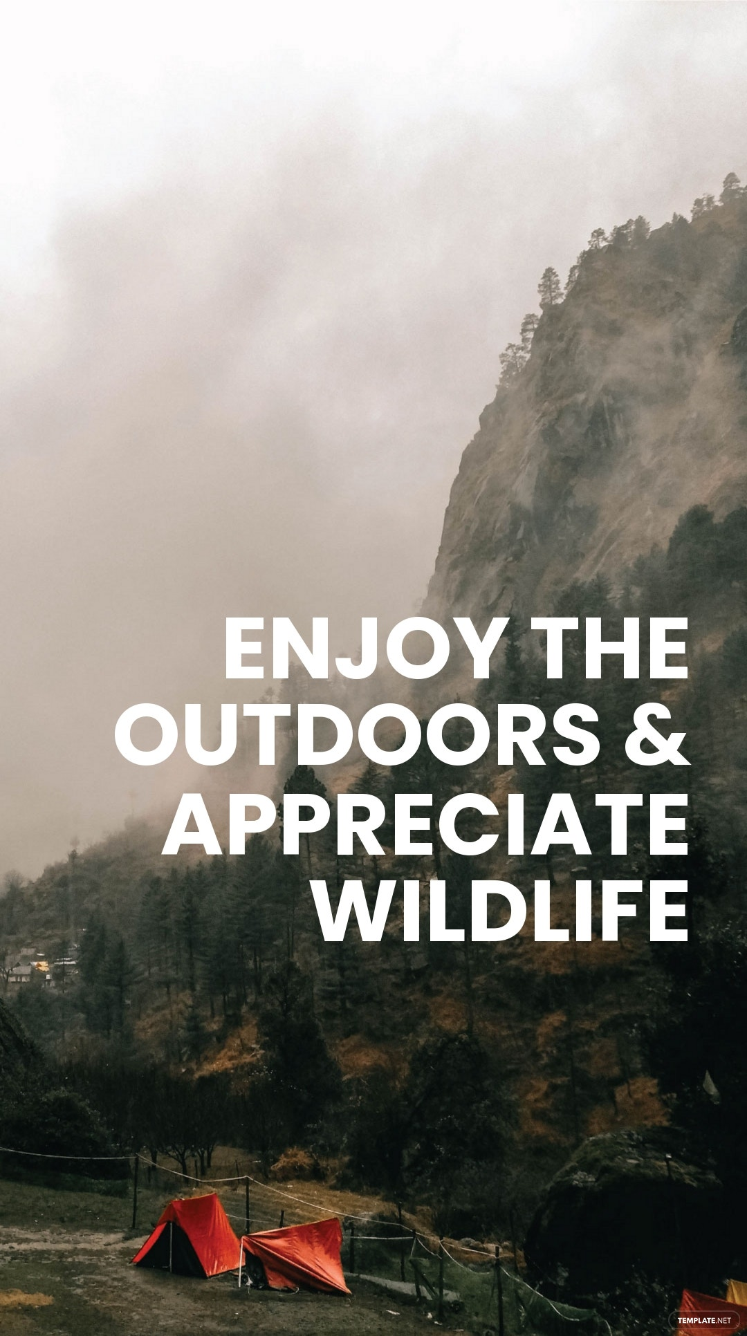Camping Advertisement Instagram Story Template 2.jpe