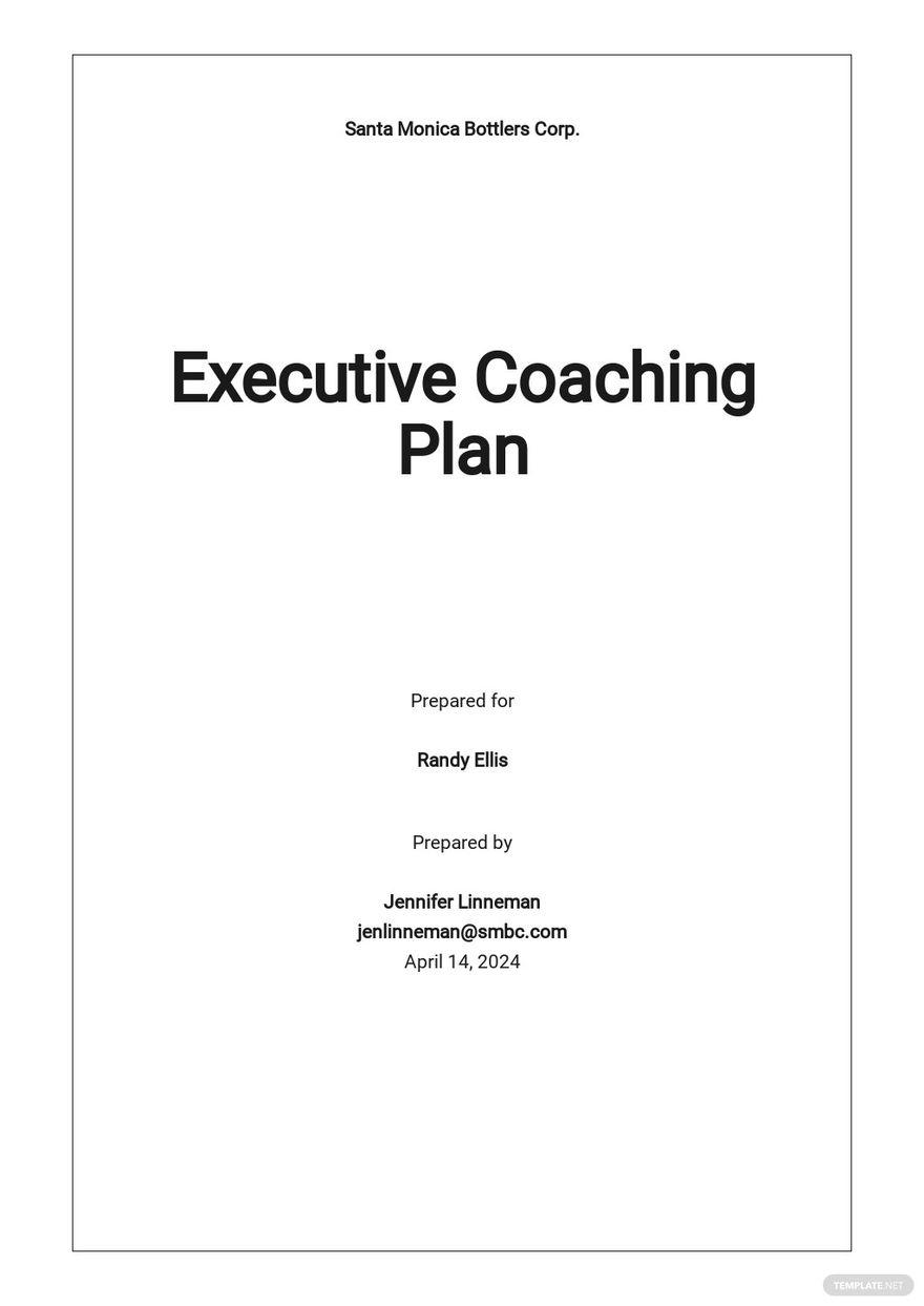 Executive Coaching Plan Template.jpe
