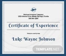 Job experience certificate template in illustrator company experience certificate template yadclub Image collections
