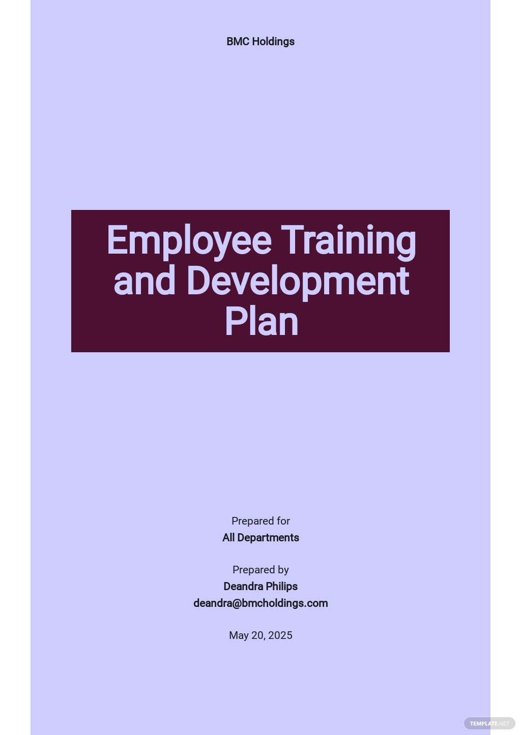 Employee Training and Development Plan Template   Word   Google Docs