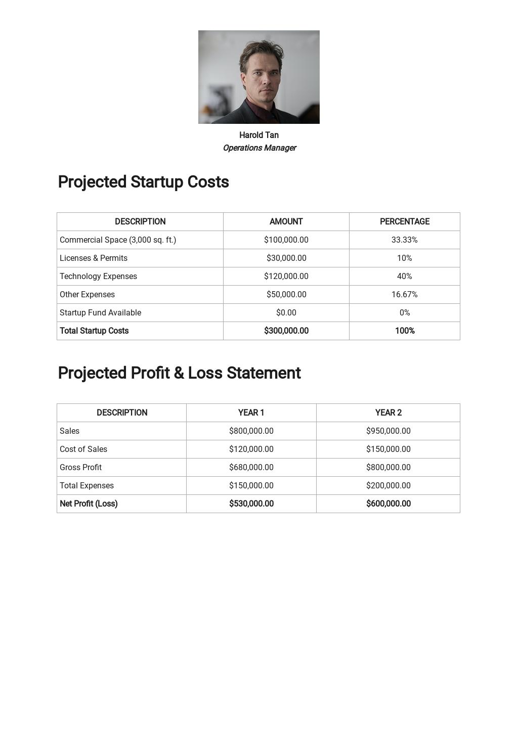 Sample Lean Business Plan Template 3.jpe
