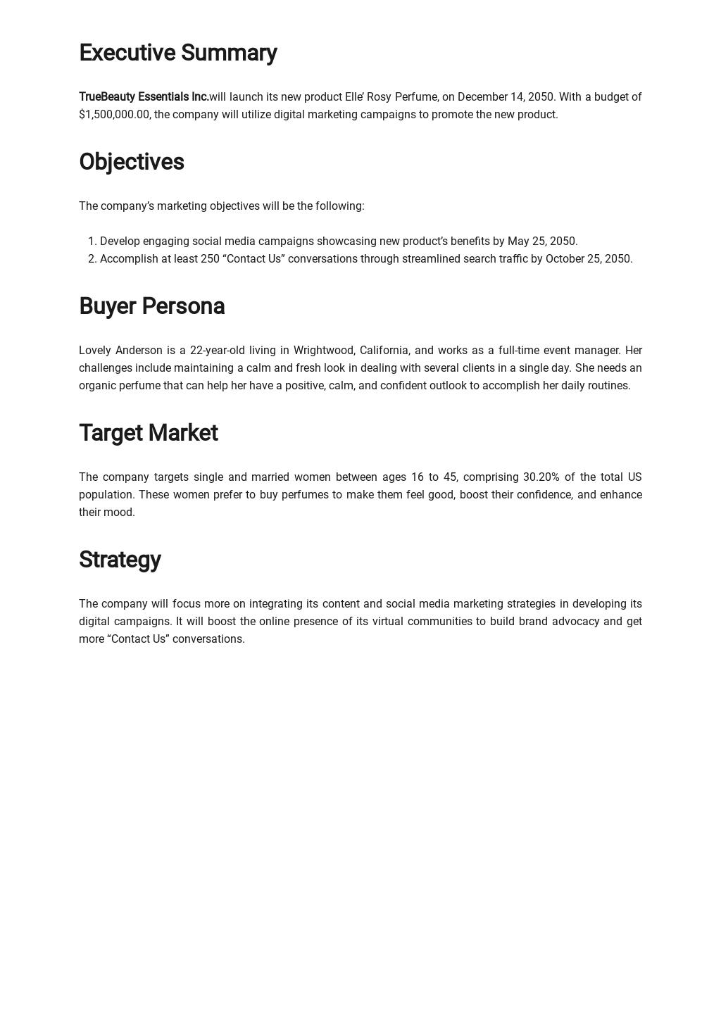 Digital Marketing Campaign Plan Template 1.jpe