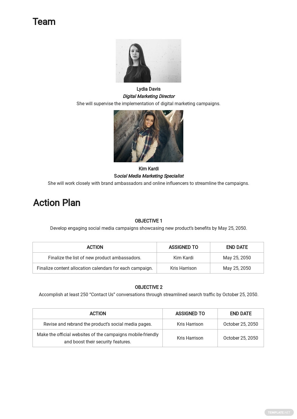 Digital Marketing Campaign Plan Template 2.jpe