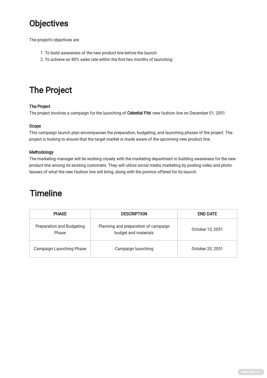 Campaign Launch Plan Template 1.jpe