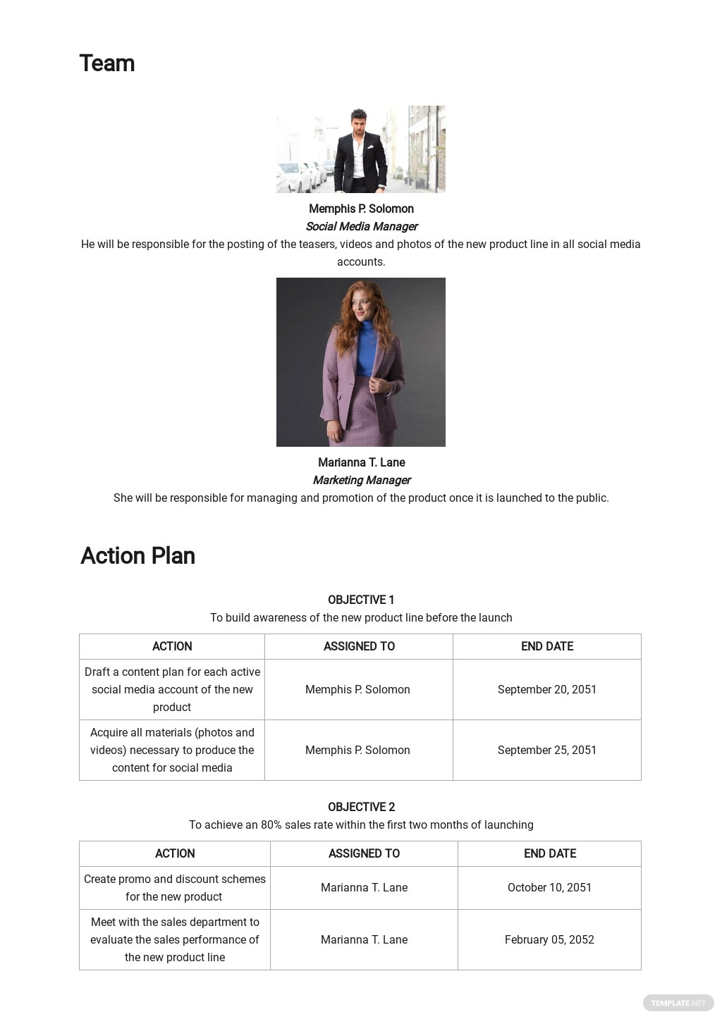 Campaign Launch Plan Template 2.jpe