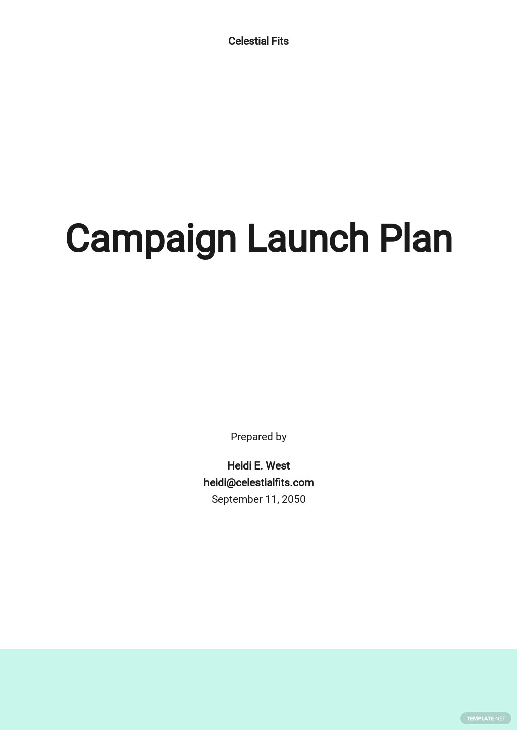 Campaign Launch Plan Template.jpe