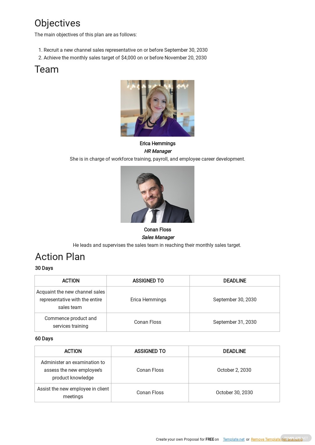 30 60 90 Day Channel Sales Plan Template 1.jpe
