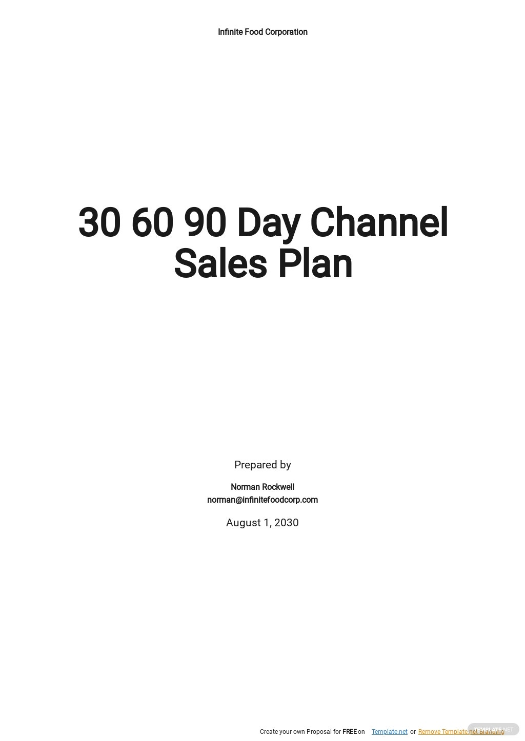30 60 90 Day Channel Sales Plan Template.jpe