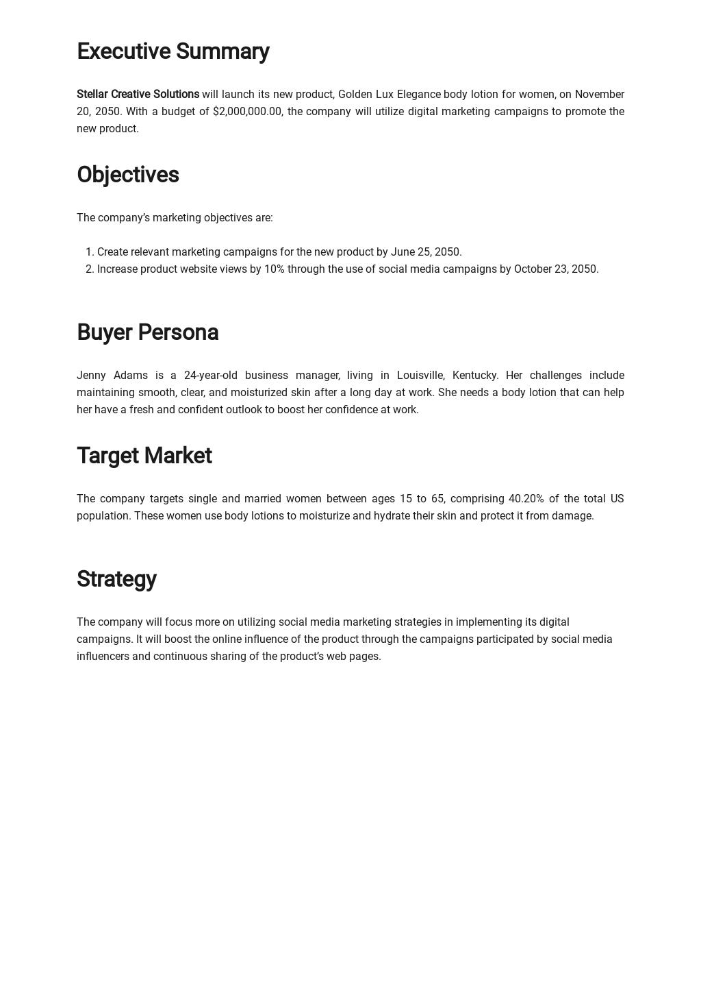 Sample Digital Marketing Campaign Plan Template 1.jpe