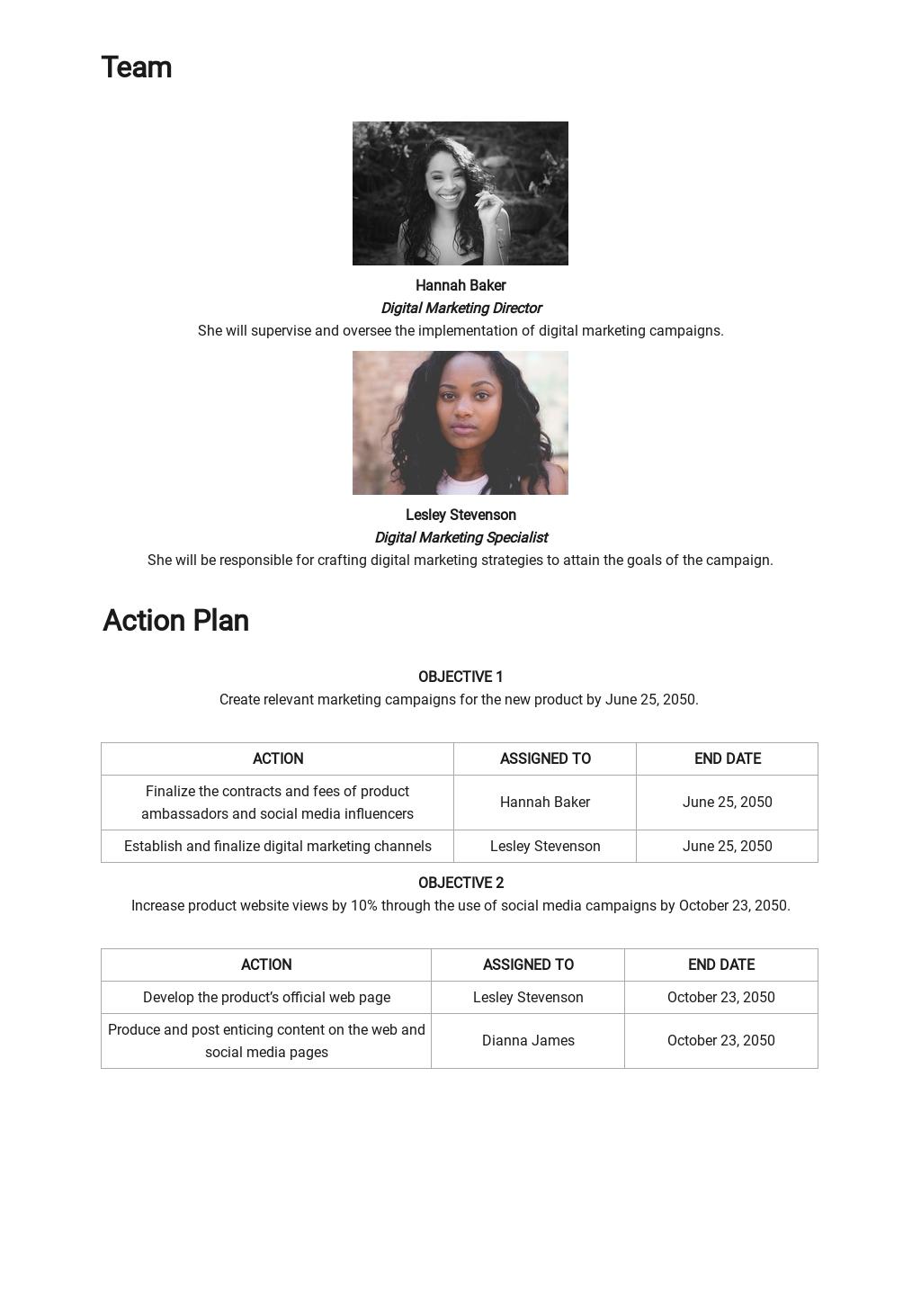 Sample Digital Marketing Campaign Plan Template 2.jpe