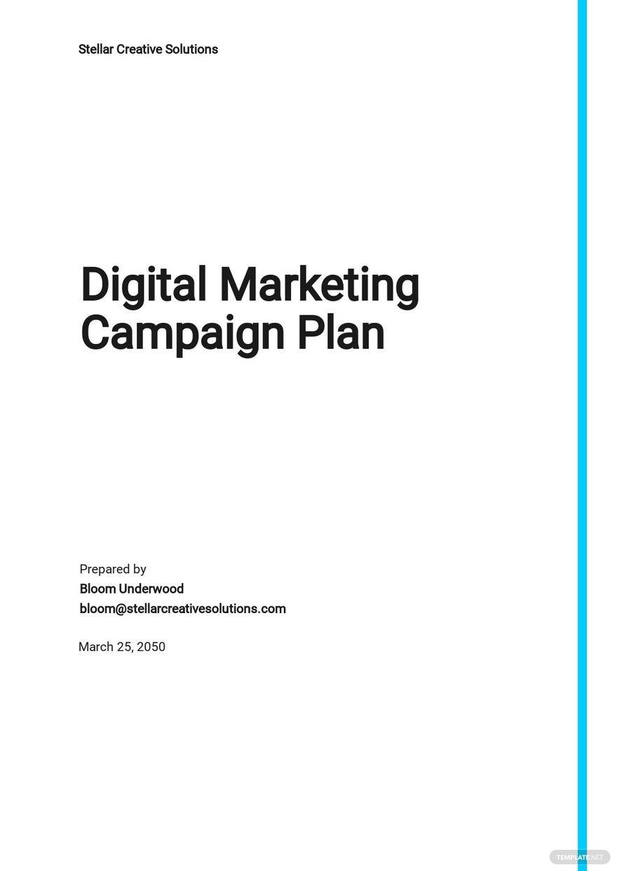 Sample Digital Marketing Campaign Plan Template.jpe