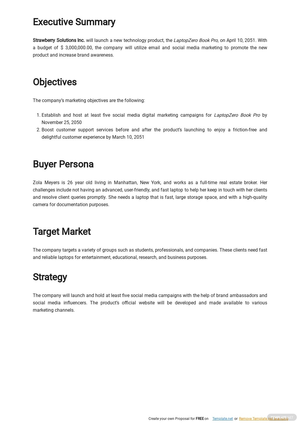 Go To Market Launch Plan Template 1.jpe