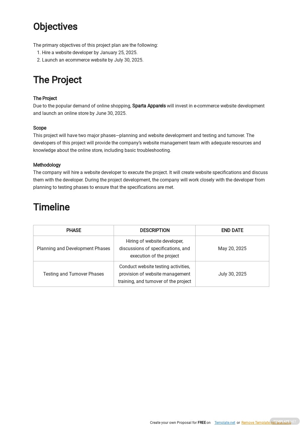 Online Store Project Plan Template 1.jpe