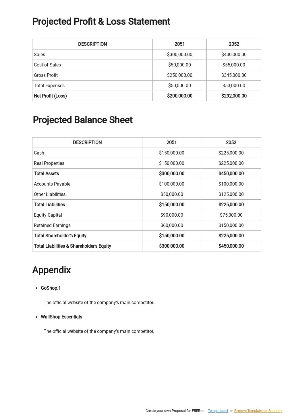 Online Marketplace Business Plan Template 4.jpe
